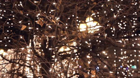 contentamento : Beautiful Christmas lights in anticipation of the holiday Stock Footage