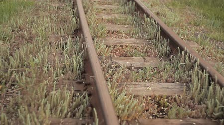 gears : Rails to move the train transport in the city is overgrown with greenery Stock Footage