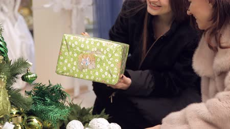 christmas tree decoration : Two beautiful girls searches Christmas gifts Stock Footage