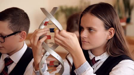 исследование : schoolchildren in school uniform are studying the layout of dna sitting in the classroom