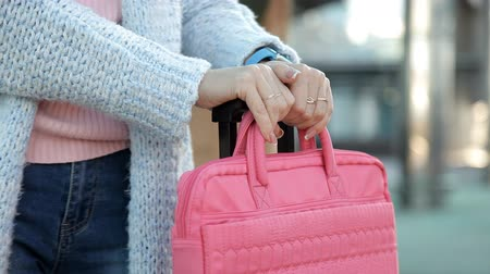 do widzenia : close-up of female hands holding suitcases on the platform Wideo