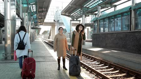 do widzenia : mom at the station sends an adult daughter on a journey
