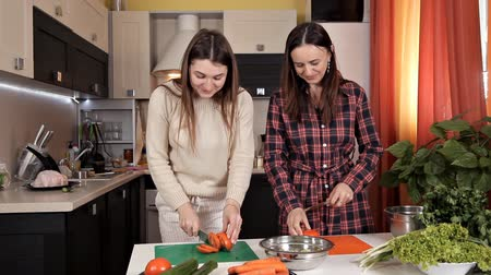 lunchen : Two young beautiful girls prepare a vegetable salad in the kitchen, have fun talking and laughing. Two sisters prepare a salad of tomatoes and cucumbers in the kitchen in the morning Stockvideo
