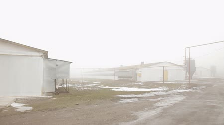 навес : Fog. Abandoned buildings Hidden chemical objects. Secret laboratory