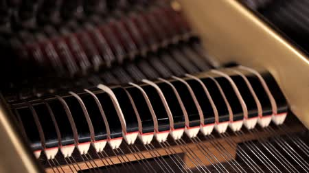 dal : Piano keyboard and strings, notes. Music, musical instrument.