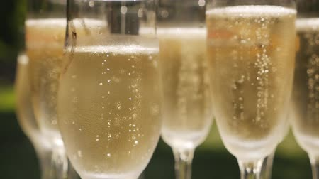kabarcıklı : Glasses of champagne with bubbles standing on a white table on a background of nature