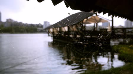 pókháló : Beautiful view of a house with a lake on a background of cobwebs. Spider Plexus. Web in the evening. A wide web plays in the wind. The web moves in the wind