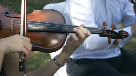 cselló : Close up playing the violin. Concert, wedding Stock mozgókép