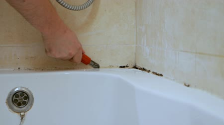 Cleaning mold and rust grow in tile joints in a humid, poorly ventilated bathroom with high humidity, weight, moisture and dampness in the concept of bath areas