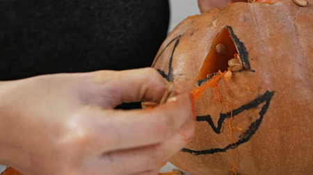 Orange pumpkin carved for the celebration of Halloween. A woman takes out the seeds and pulp of a pumpkin. Preparing the scenery for a traditional fall party. Crazy halloween