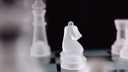 rytíř : Crystal chess. 2 scenes - Knight and bishop take the queen.