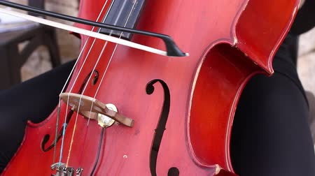 cselló : musician play on cello