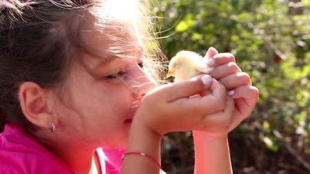 young bird : Cute girl kissing and petting little yellow chicken, close up