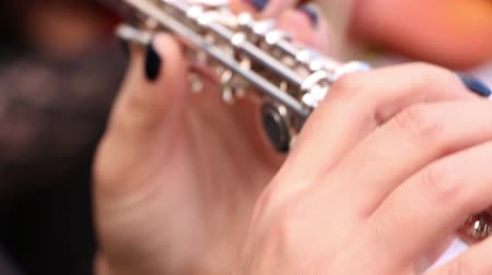 flutist : Musician playing on flute