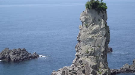monolith : Oedolgae rock, alos known as Janggunseok rock, in Jeju island, Korea. The rock is 10 meters in circumference and 20 meters in height.