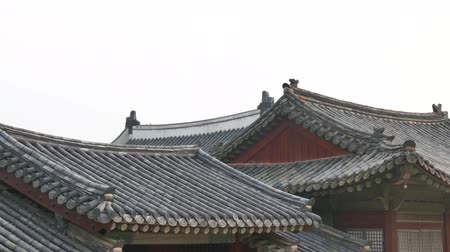 lined : panning of tiled roofs of Changgyeonggung palace in Korea. Stock Footage