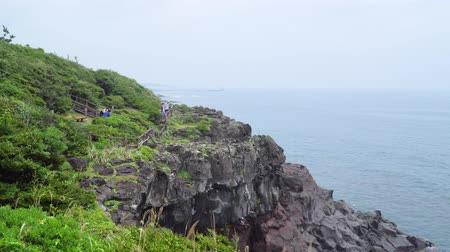 ограждение : Jeju, Korea - May 24, 2017: Seascape of Olle trail Course No.5 at Namwon-eup. The trail runs from Namwon port to Soesokkak, and it is famous for its serene and beautiful seaside walking path. Стоковые видеозаписи