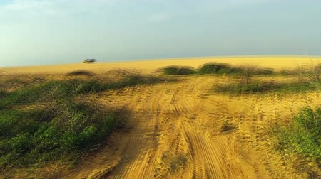 Колумбия : Video driving through a desert going towards a large sand dune in La Guajira, Colombia Стоковые видеозаписи