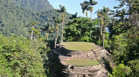 Колумбия : View of the Ciudad Perdida, or Lost City in the Sierra Nevada de Santa Marta mountain range in Colombia Стоковые видеозаписи