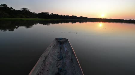 amazonka : Canoe moving on a lake in the Bolivian Amazon rain forest at sunset in Madidi National Park