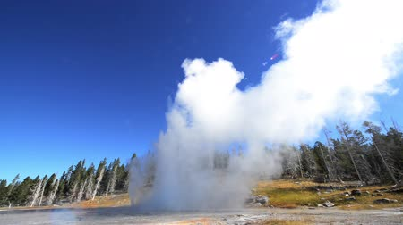 geiser : Snelle beweging van Grand Geyser uitbarsting in Yellowstone National Park in de Upper Geyser Basin Stockvideo