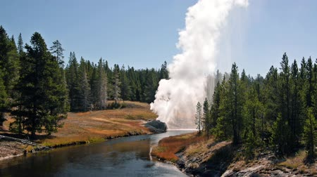geiser : Riverside Geyser uitbarsting in Yellowstone National Park