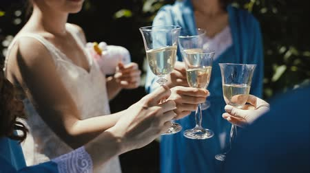 blahopřání : Girls Having Wine Toasting Clinking Wine Glasses Sophisticated Dinner Party Holiday Vacation Travel Happy Birthday Celebration Festive Concept Dostupné videozáznamy