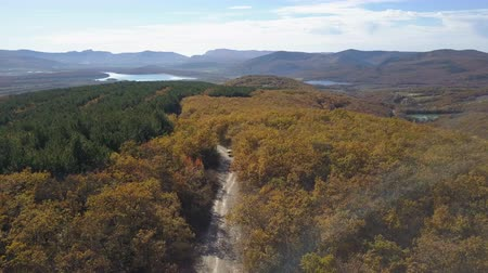 outonal : Aerial view of car driving through the forest in mountains. Driving on beautiful mountain road in autumn. Aerial trekking shot of a small car.
