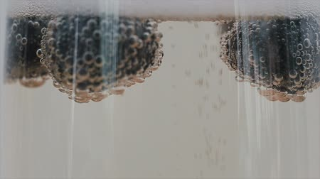 hiss : Closeup of champagne bubbles attached to blueberries floating in a glass. Slow motion. Stock Footage