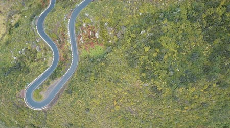 アセント : Aerial top view of empty serpentine road in Tenerife, Spain. Canary Mountains covered with green plants. 動画素材
