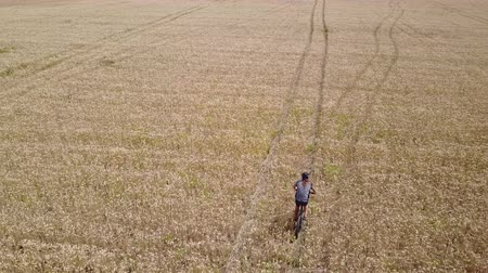 Aerial tracking shot of a long-haired man riding a bicycle in the centre of a wheat field during the day. Dostupné videozáznamy
