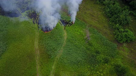 wysypisko śmieci : Flight through a smoke from burning green field, wild fire in nature landscape, aerial footage from drone