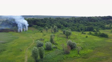 futótűz : Aerial footage from drone of burning green field, wild fire in nature landscape, Flight through over a smoke Stock mozgókép