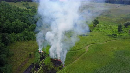 futótűz : Aerial footage from drone of burning green field, wild fire in nature landscape, Flight through a smoke