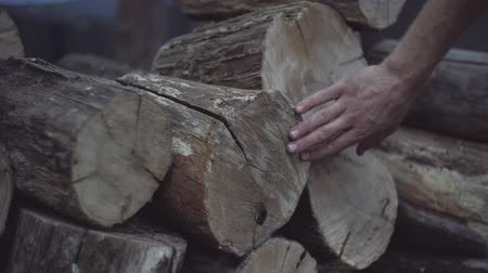 sentido : Mans hand feels the wood structure of oak firewood blocks stored for winter in a stack.