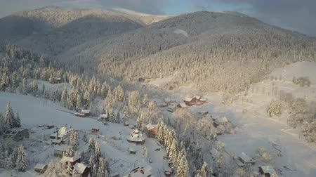 baita : Aerial view of houses among pine trees covered with snow in mountains. Rural landscape in winter at sunrise. Mountain village in the snow from a height.