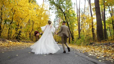 núpcias : Slow motion. Young attractive Bride and Groom holding hands run along a road in autumn forest towards a car. Rear view. Happy loving newlyweds run among Colored fall trees in a park.