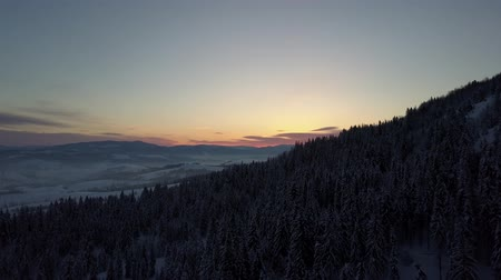 baita : Aerial view of Carpathian mountains in winter at sunrise. Flight over mountains covered with spruce and pine forest under snow. New winter day is coming. Natural landscape from a height.