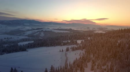 surroundings : Flight over Carpathian mountains in winter at sunrise. Rural landscape in winter from a height. Aerial view of mountains covered with spruce forest under snow.