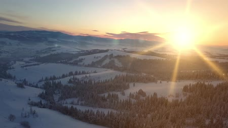 faház : Flight over mountains covered with spruce and pine forest under snow at sunrise. New winter day is coming. Natural landscape from a height. Aerial view of Carpathian mountains in winter. Stock mozgókép