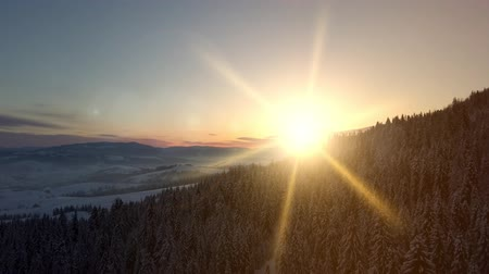 faház : Aerial view of sunrise over Carpathian mountains in winter. New winter day is coming. Flight over mountains covered with spruce and pine forest under snow at sunrise. Natural landscape from a height. Stock mozgókép