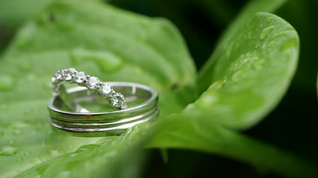 platina : Wedding rings on a green wet leaf after rain. Wedding summer details and accessories close-up. Time before the wedding ceremony in nature. Jewelry made of silver or platinum with diamonds.