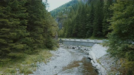 eire : Stream flows between beautiful tall trees. Creek passing an old medieval bridge in a rocky landscape next to the mountains. Small stream runs under the mountains along a stone bridge. Water source. Stock Footage