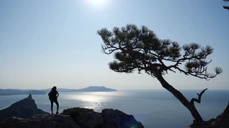 climbed : Beautiful sports girl with a backpack climbs on a high rock and looks at a beautiful view of the sea with the sun. Female tourist climbed a rock and enjoys a nice view of the sea in slow motion.