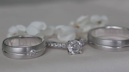 platina : Beautiful wedding rings for a wedding. Expensive and elegant gift for the wife to make an offer of marriage. Rings with diamonds. Silver rings on the finger for the bride and groom. Gift for a girl.