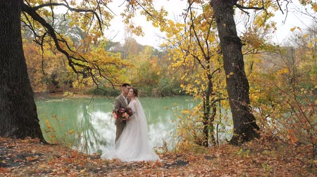 結婚した : Young attractive loving couple of newlyweds in autumn forest by the lake. Couple in love newlyweds among Beautiful colorful seasonal foliage. wedding in the woods in nature 動画素材