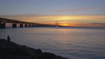 kodaň : Oresundsbron at sunset. The bridge between Sweden and Denmark. Cars drive over the bridge and underneath the bridge goes a train. A fisherman stands fishing Dostupné videozáznamy