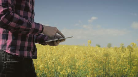 agronomist : Modern male farmer with tablet computer in a field using programs to calculate their harvest