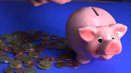 hesap : Pink piggy bank standing on a blue background, and next to it lay a euro coin that a person throws inside the pig. Stok Video