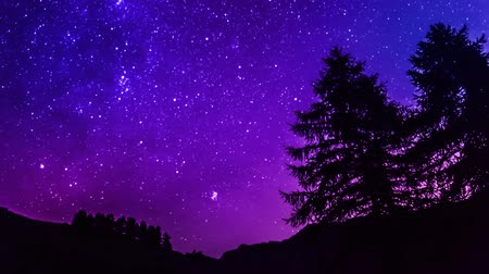 starlit : Time Lapse purple night sky stars over mountain and tree silhouette. 4K